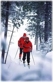 nordic skiiers